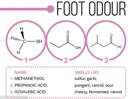 Body odor